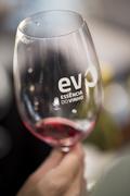FESTIVAIS: Essência do Vinho - Porto
