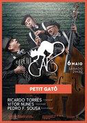 """MÚSICA: """"Petit Gatô"""" - Ricardo Torres, Vitor Nunes & Pedro F. Sousa"""