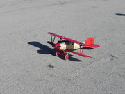 Miss Albatros and her red baron