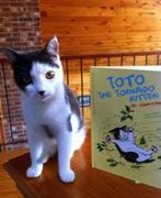 """Toto the Tornado Kitten"" Book Signing"