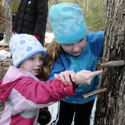 Maple Days at OSV