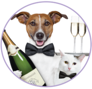 Second Chance Animal Shelter Preview Night