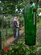 National Gardens Scheme  Opening at Golf  Course Allotments