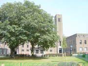 Hornsey Town Hall informal meetup/picnic