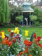 National  Gardens Scheme Charity Garden event