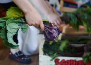 Volunteering with your local veg scheme