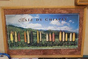 Documentary Film: A Place Called Chiapas