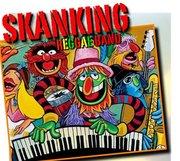 Shanking Reggae Band Sabato 3 Agosto!