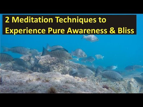 2 Meditation Techniques To Experience Pure Awareness & Bliss | With Guided Meditation