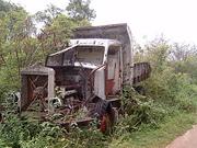 Rotten truck - Banaba