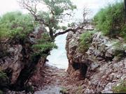 Tabwewa Canoe Passage 1997