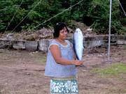 Fish Caught on Banaba