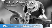PHOTOGRAPHY CONTEST BLACK AND WHITE 2019 COMPETITION