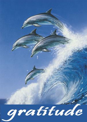Gratitude_Symbol_Dolphins