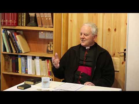 Bishop Williamson - Pascendi - Cork (5 of 7)