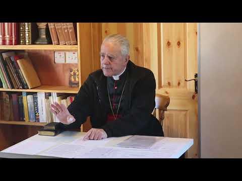 Bishop Williamson - Pascendi - Cork (6 of 7)