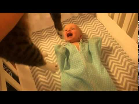 Baby Can't Contain Her Excitement When She Sees a Cat !