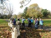 Henbury healthy walking group admiring the carvings.