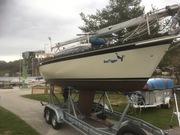 Sea Tigger steuerbord 4.4.19