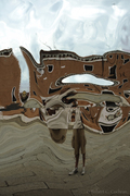 My Reflecting On Surreal Art In Venice