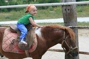 alice a cavallo2011 (1)