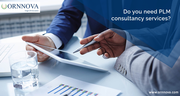 Do you need PLM consultancy services?