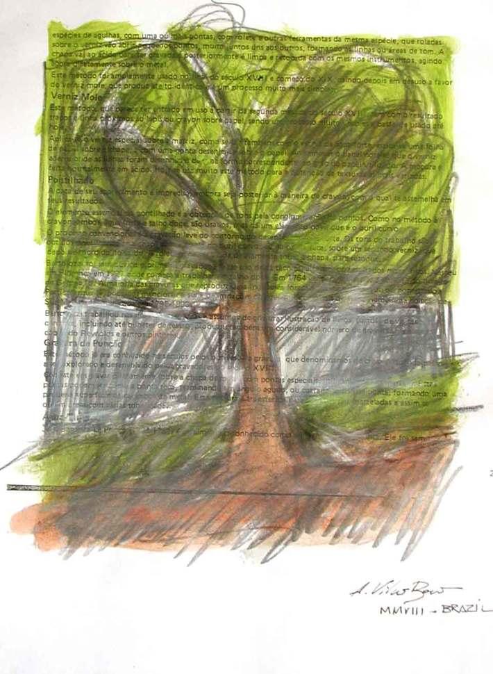 Árvore 8
