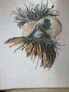 Envelope vulture