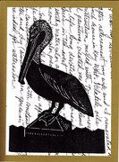 pelican mail art
