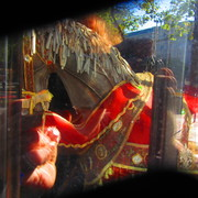 the horse in the window 1