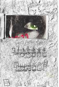 a 6 by 9 eye in window compo book