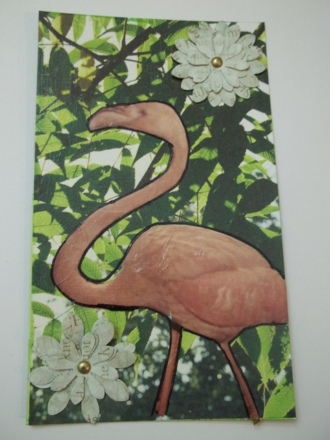 Flamingo for Ed Giecek