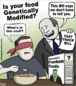 Is Your Food Genetically Modified