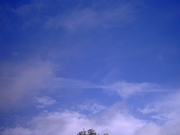 chemtrail/ & clouds.