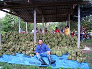 Chingchai in a Durian orchard