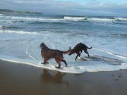 Sunday morning on the beach