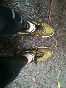 ダンデノング山マラソン練習泥々急な坂がいっぱいDandenongs mtn practice