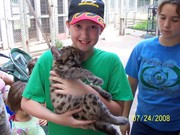 Son and Baby Leopard