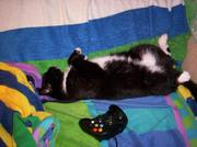 Napping after playing X-Box
