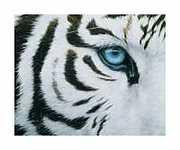 Blue-Eyes-Print-C12835441