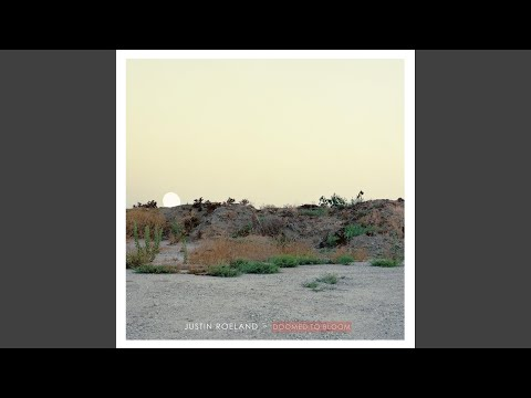 Justin Roeland - Desolation