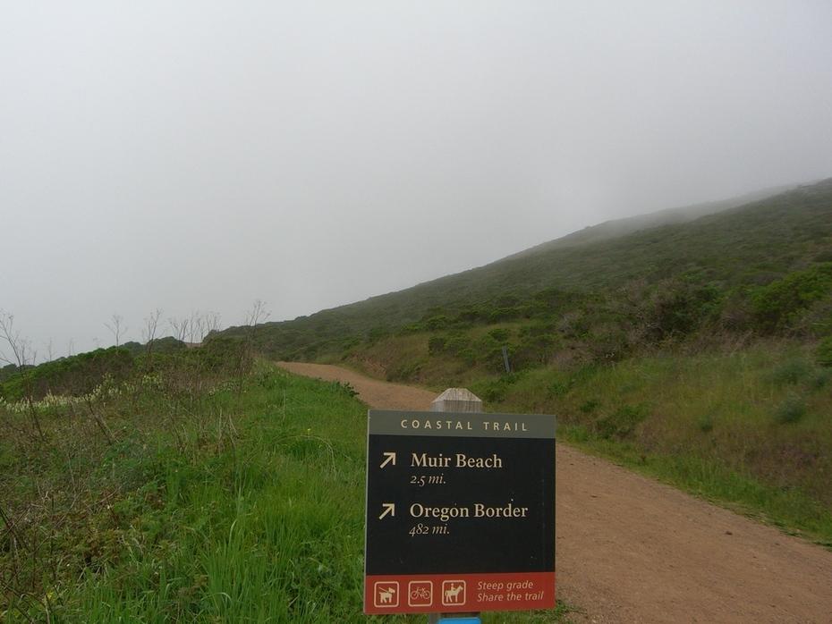 The Coastal Trail