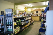 Lakeshore Pet Stuff Shop local free delivry