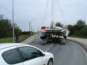 11. holding up traffic on the way to the water