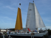 8. the sail set