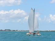 Key West 2010 024