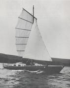 tane 1973