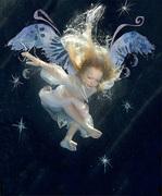22-wings-copyright-zena-h