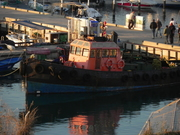 Tug boat in our bay