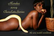 2009 chocolate series